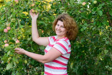 middle-aged woman in a garden about Apple trees