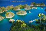 Fam islands Wayang Indonesia