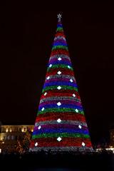New year tree at night