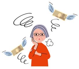シニア 女性 お金