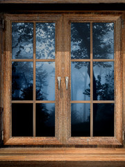 Wooden window and misty forest