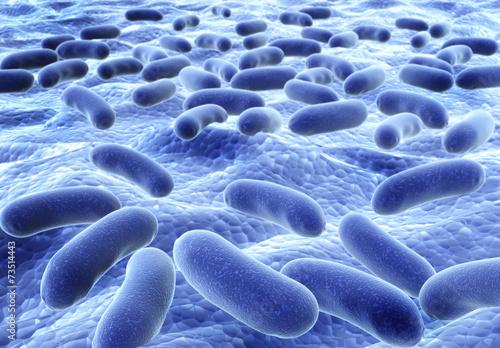 Leinwanddruck Bild Bacteries