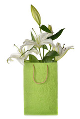 White lily in green bag