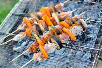 Grilled meat with tomato and aubergine on wooden sticks