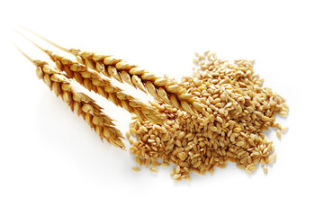 wheat and flax