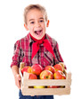Happy farmer boy holding apples