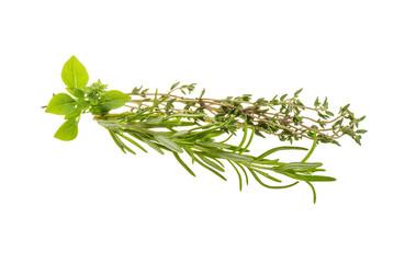 Fresh aroma herbs