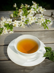 Tea of healthy herb. Cup of warmly drink
