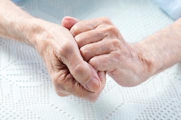Old man's hands. Closeup.