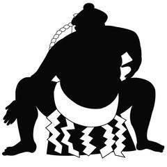 相撲土俵入り