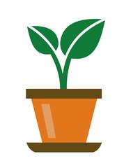 green organic plant