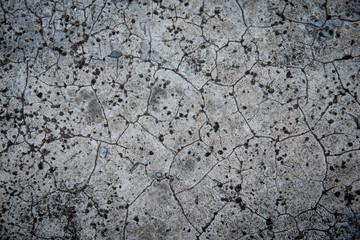 Grunge concrete  background texture