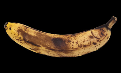 old banana on a black background