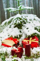 Gifts under the Christmas trees