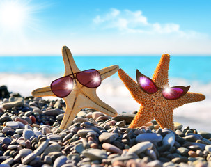 Starfish and sunglasses