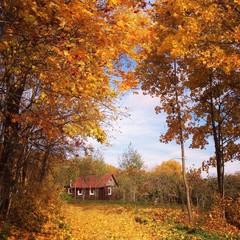 дом в кленовом лесу