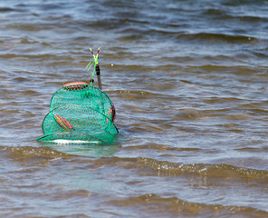 net for fish