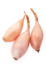 Shallots isolated on white, clipping path