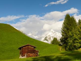 Holzhütte auf der Waldlichtung mit Berg im Hintergrund
