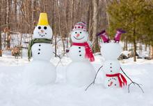 """Постер, картина, фотообои """"Snowman family"""""""
