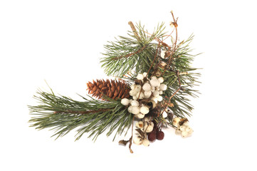 Pine branch, red and white berries
