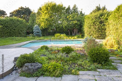 Garden and swimming pool in backyard - 73538608