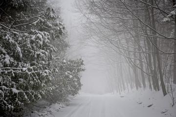 Winter road during snowfall