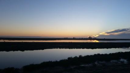 Hamilton Field Wetlands Dawn 7