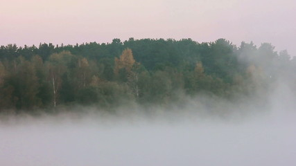 The low altitude cloud in the autumn forest