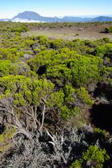 La Réunion - Cratère Commerson