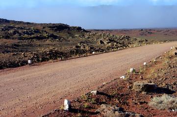 La Réunion - Sentier Josémont