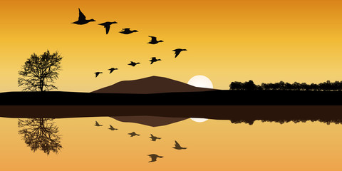 Paysage Canard Montagne
