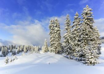 Jura mountain in winter, Switzerland