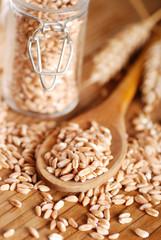 chicchi di grano duro nel cucchiaio di legno