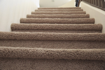 Carpeted stairs at home