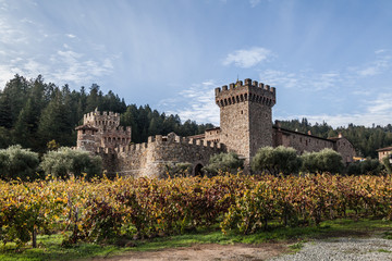 Castle winery