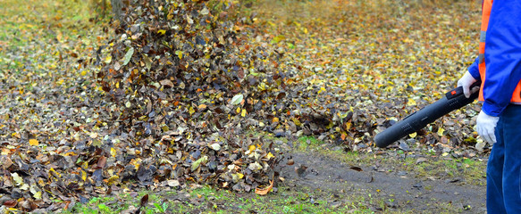 Cleaning autumn leaves4. The worker in a uniform clears a path u