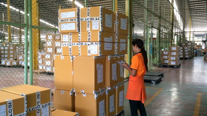 female worker checking goods carton.