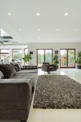 Luxury drawing room