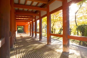 朝の談山神社拝殿