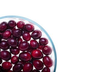 Cranberries, quarter view
