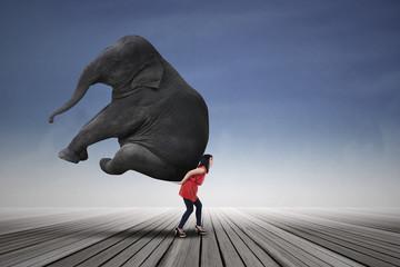 Beautiful woman carrying elephant