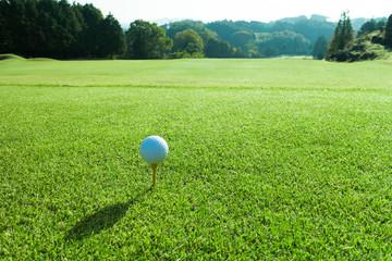 ゴルフ ティーグラウンド