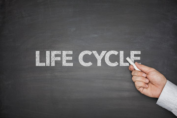 Life cycle on blackboard