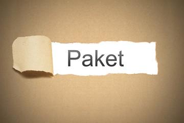 Braunes Papier Karton aufgerissen Paket