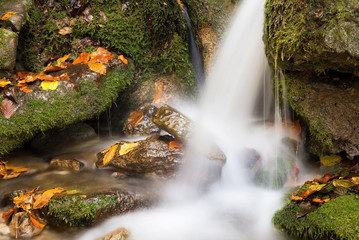 Waterfall in autumn canyon. Autumn landscape