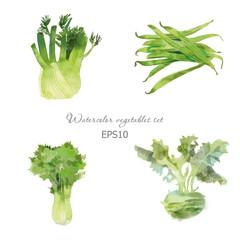 Set of lettuce fennel bean kohlrabi