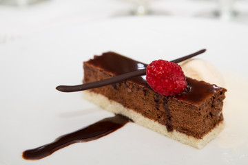 Raspberry on Chocolate Dessert