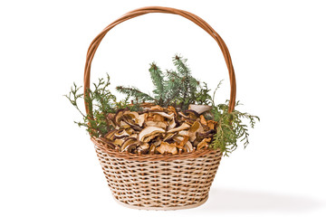 Basket with dried mushrooms