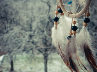 dream catcher on a winter forest